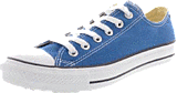 Converse - All Star Seasonal Ox