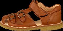 Angulus - 5205-101 Cognac